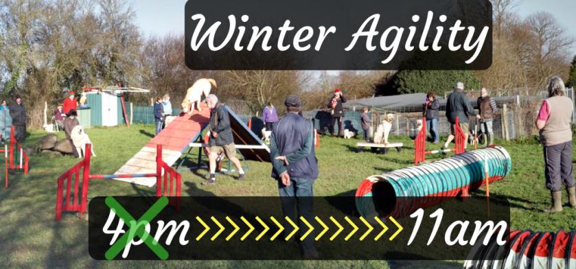 winter agility 2018