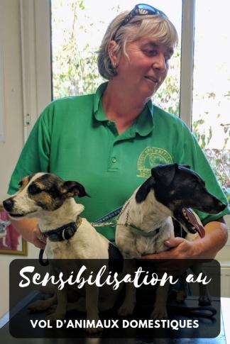 Nos conseils pour vous aider à protéger votre chien des voleurs.
