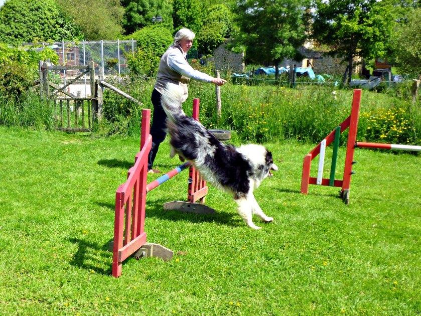 Anita and Fin jump