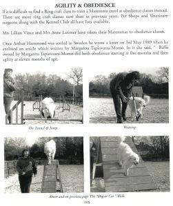 Maremma book featuring Anita Edwards and Bella