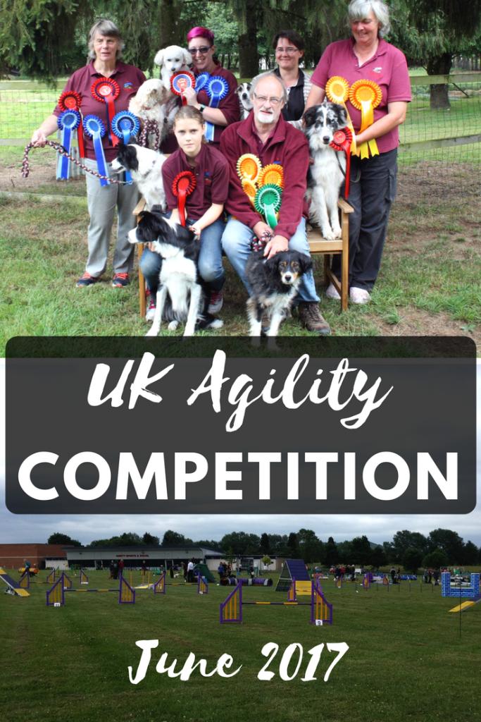 Grande Daze UK Agility competition June 2017