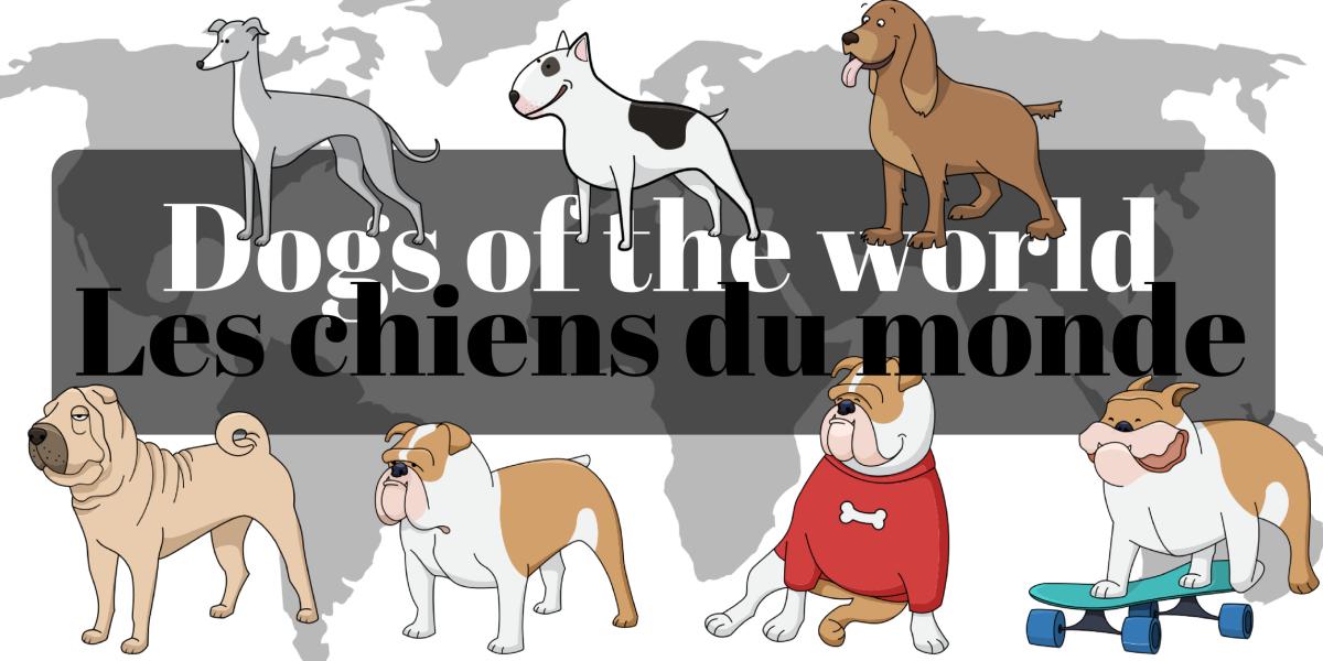 World dogs