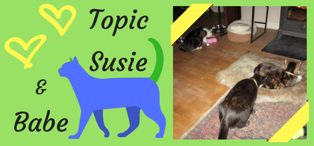 Topic, Susie andBabe